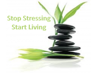 Stress-Free-Life-300x242